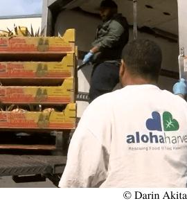 Aloha Harvest Donation Video Still Darin Akita
